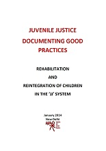 Juvenile Justice Documenting Good Practices